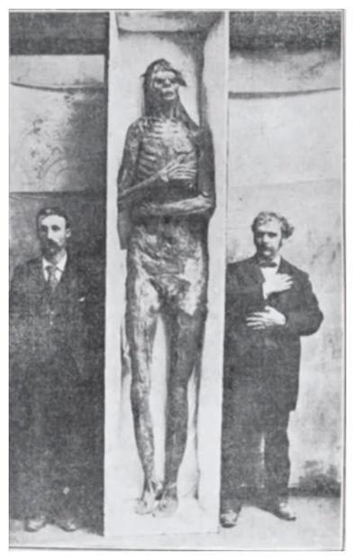 24hGold - 18 squelettes de géa...